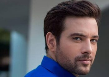 Mikaal Zulfiqar highlights an issue faced by public